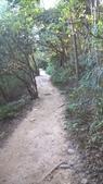 2015-12-05 虎頭山:生態解說、香菇亭步道:WP_20151205_16_04_50_Pro.jpg