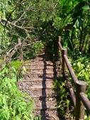 2016-07-22 中山舊寮瀑布步道:P_20160722_150244.jpg