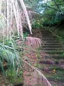 2014-11-22 平溪:平湖森林遊樂區登山步道:IMG_20141122_112831.jpg