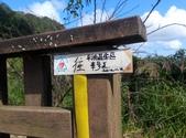 2014-11-22 平溪:平湖森林遊樂區登山步道:IMG_20141122_113303.jpg