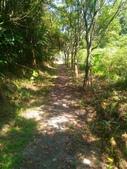 2016-07-22 玉蘭茶園步道:P_20160722_132916.jpg