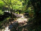 2016-07-22 玉蘭茶園步道:P_20160722_132252.jpg