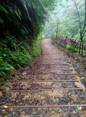 2014-10-11 老公崎步道:IMG_20141011_104809.jpg