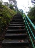 2014-11-15 永福龍山寺步道:IMG_20141115_115329.jpg