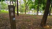 2015-10-31 桃園-長庚-養生文化村步道:P_20151031_141021.jpg