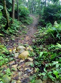 2014-10-11 老公崎步道:IMG_20141011_110111.jpg
