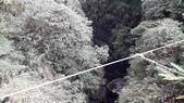 2017-11-16竹山天梯:20171116_133558.jpg