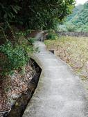 2015-01-10 宜蘭-大修宮步道.頭圍山:P1020321.jpg