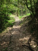 2014-08-23 雲海山.雲海國小:IMG_7725.JPG