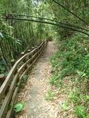 2014-08-16 角板山之溪口吊橋:IMG_7633.jpg