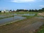 2014-08-09 燒炭窩古道《未竟》:IMG_7577.jpg
