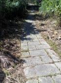 2014-11-22 平溪:平湖森林遊樂區登山步道:IMG_20141122_114228.jpg