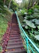 2014-11-15 永福龍山寺步道:IMG_20141115_115005.jpg