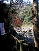 2014-12-29 蓬萊護魚步道:IMG_20141229_123138.jpg