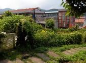 2014-09-08 龍洞灣岬步道:IMG_20140908_140223.jpg