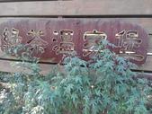 2014-12-20 新竹:黃刼步道:IMG_20141220_152425.jpg