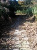 2014-11-22 平溪:平湖森林遊樂區登山步道:IMG_20141122_113856.jpg
