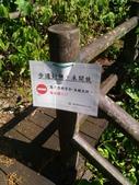 2016-07-22 中山舊寮瀑布步道:P_20160722_145930.jpg