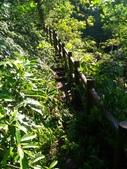 2016-07-22 中山舊寮瀑布步道:P_20160722_150913.jpg