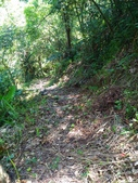 2016-07-22 玉蘭茶園步道:P_20160722_132139.jpg