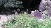 2014-09-06 跑馬古道:IMG_20140906_145134.jpg