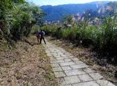 2014-11-22 平溪:平湖森林遊樂區登山步道:IMG_20141122_114004.jpg