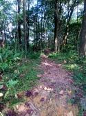 2014-09-20平安鐘環山步道,平溪老街:IMG_20140920_151032.jpg