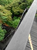2014-10-11 老公崎步道:IMG_20141011_104324.jpg