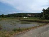 2014-08-09 燒炭窩古道《未竟》:IMG_7586.jpg