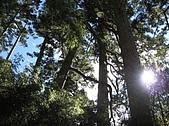 2007/12/22~23玉山:IMG_1297.jpg