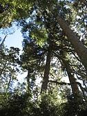 2007/12/22~23玉山:IMG_1299.jpg