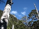 2007/12/22~23玉山:IMG_1304.jpg