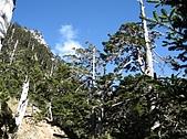 2007/12/22~23玉山:IMG_1306.jpg
