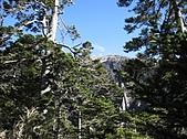 2007/12/22~23玉山:IMG_1307.jpg
