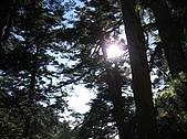 2007/12/22~23玉山:IMG_1310.jpg