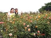 中社花園:DSC00007.jpg