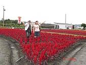 中社花園:DSC00016.jpg