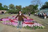 台南古蹟二日遊:P1000834.jpg