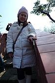 嘸棒尬馬西愛七桃之花博-花茶殿:P1230626.jpg