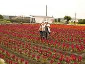 中社花園:DSC00023.jpg