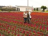 中社花園:DSC00024.jpg