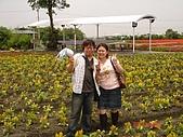 中社花園:DSC00026.jpg
