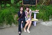 2009新社薰衣草森林:P1010567.jpg