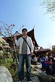 嘸棒尬馬西愛七桃之花博-花茶殿:P1230612.jpg