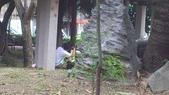 公園愛侶:DSC_0202.jpg
