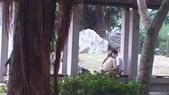 公園愛侶:DSC_0208.jpg