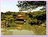 日本岡山富山賞櫻之旅:金碧輝煌的金閣寺