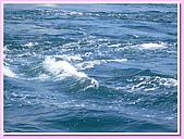 日本岡山富山賞櫻之旅:海峽漩渦