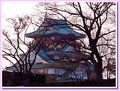 日本岡山富山賞櫻之旅:另一個角度的大阪城