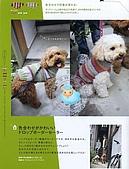 a290-河出書房新社9784309281407:A290-001 (19).jpg